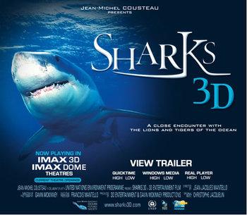 Sharks3d